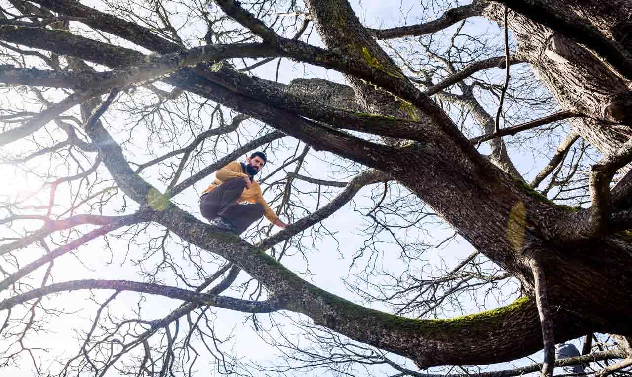 Treerunner
