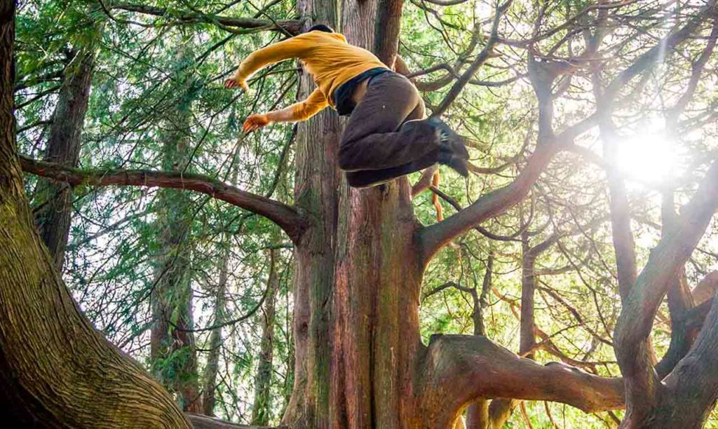 Beyond Calisthenics: Why Human Movement Training Requires Nature