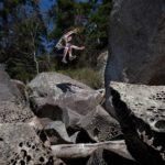 practice natural movement